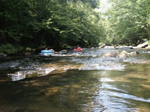Places to Go Camping in North Carolina