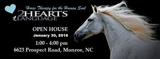Equine Facilitated Learning Center