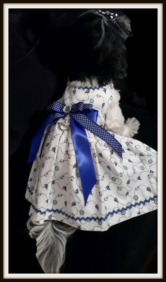 handmade dog clothes auction