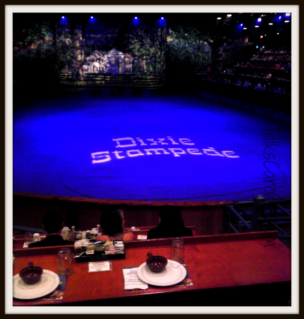 Dixie Stampede Pigeon Forge – Good Show, Good Food, Good Times