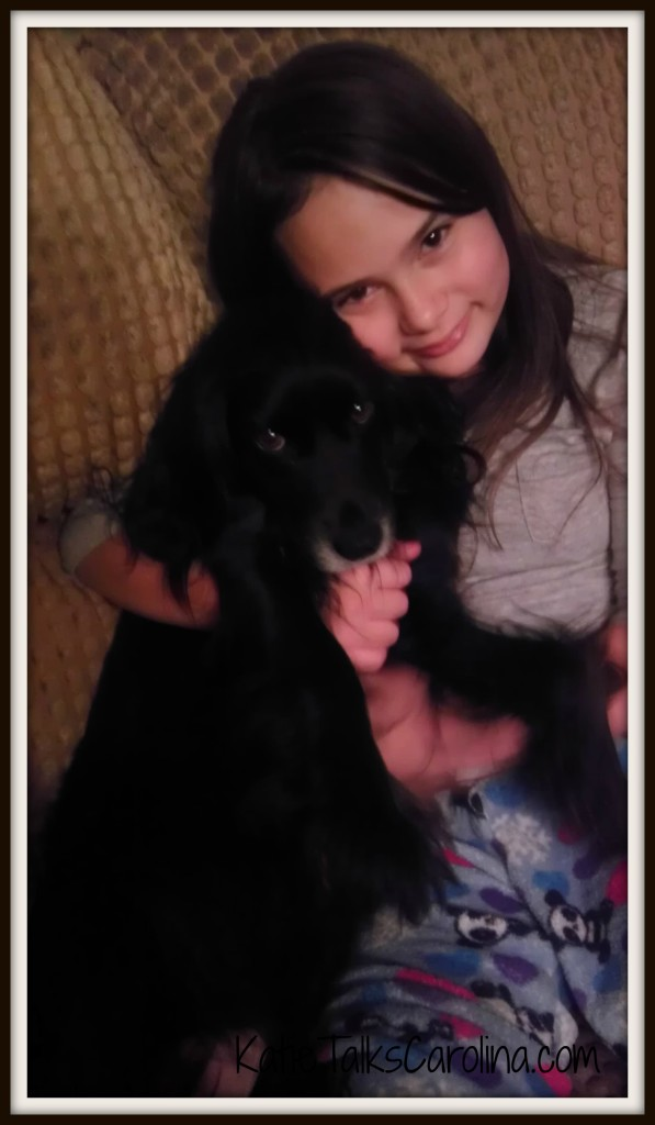 Update on Maggie's Story – Death of a Pet #clt